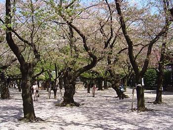 2009年4月10日靖国神社境内.jpg