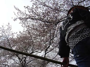 2009年4月4日新河岸川観光舟運1.jpg