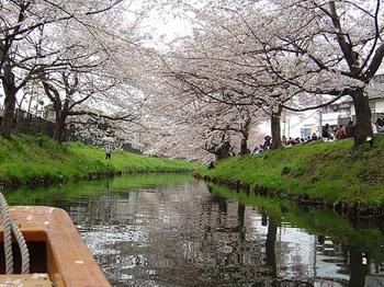 2009年4月4日新河岸川観光舟運3.jpg