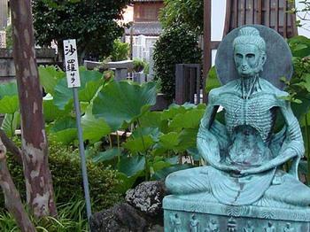 2009年7月13日長喜院沙羅2.jpg